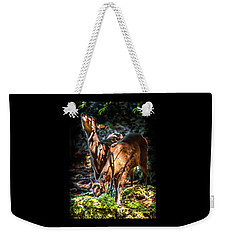 Weekender Tote Bag featuring the photograph Morning Light Of Dawn by Karen Wiles