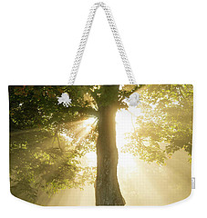 Morning Light Shining Down Weekender Tote Bag