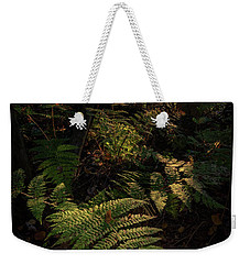 Weekender Tote Bag featuring the photograph Morning On The Coastal Trail by Rick Berk
