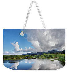 Weekender Tote Bag featuring the photograph Morning Reflections On A Marsh Pond by Greg Nyquist