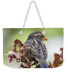 Morning Rest Weekender Tote Bag by Betty-Anne McDonald