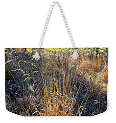 Morning Sun Backlights Fall Grasses In Glacial Park Weekender Tote Bag