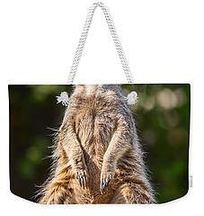 Morning Sun Weekender Tote Bag by Jamie Pham