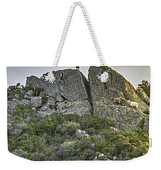 Morning Sun Lit Rocky Hill Greece Weekender Tote Bag