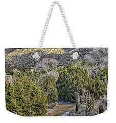 Weekender Tote Bag featuring the photograph Morning Walk by Alan Toepfer