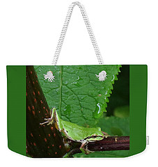 Weekender Tote Bag featuring the photograph Morning Yoga by I'ina Van Lawick
