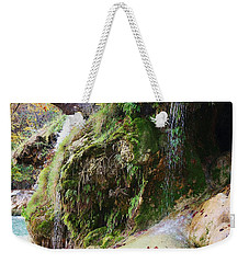 Weekender Tote Bag featuring the photograph Moss And Waterfalls by Sheila Brown
