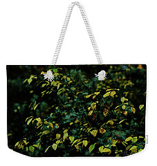 Weekender Tote Bag featuring the photograph Moss In Colors by Gene Garnace