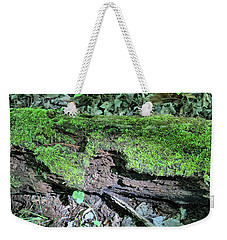 Weekender Tote Bag featuring the photograph Moss On A Log 2 by Richard Goldman