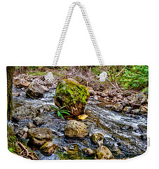 Weekender Tote Bag featuring the photograph Mossy Boulder by Christopher Holmes