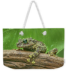 Weekender Tote Bag featuring the photograph Mossy Frog by Nikolyn McDonald