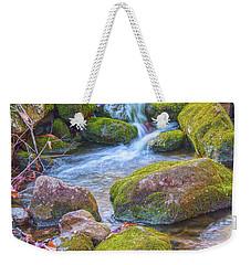 Mossy Stepping Stones Weekender Tote Bag by Angelo Marcialis