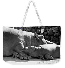 Mother And Baby Hippos Weekender Tote Bag