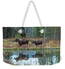 Mother And Baby Moose Reflection Weekender Tote Bag