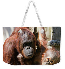 Mother And Baby Waiting For Lunch Weekender Tote Bag