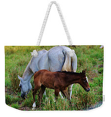 Mother And Child Weekender Tote Bag by Craig Wood