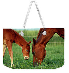 Mother And Foal 3377 H_2 Weekender Tote Bag