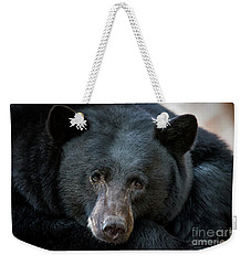 Mother Bear Weekender Tote Bag by Mitch Shindelbower