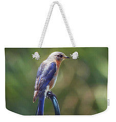 Mother Bluebird Weekender Tote Bag
