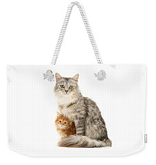 Mother Cat And Ginger Kitten Weekender Tote Bag