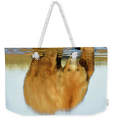 Mother Grizzly Reflection Weekender Tote Bag