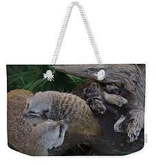 Mother Meerkat And Pup Weekender Tote Bag
