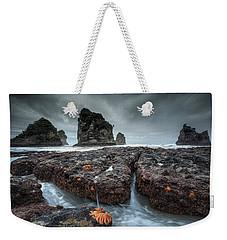 Motukiekie Weekender Tote Bag