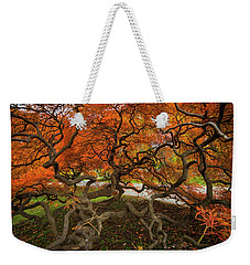 Mount Auburn Cemetery Beautiful Japanese Maple Tree Orange Autumn Colors Branches Weekender Tote Bag