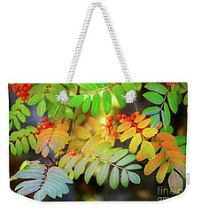Mountain Ash Fall Color Weekender Tote Bag by Michele Penner