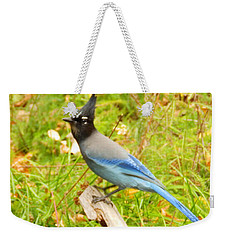 Mountain Blue Jay Weekender Tote Bag