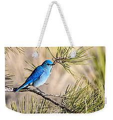 Mountain Bluebird In A Pine Weekender Tote Bag