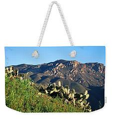 Weekender Tote Bag featuring the photograph Mountain Cactus View - Santa Monica Mountains by Matt Harang