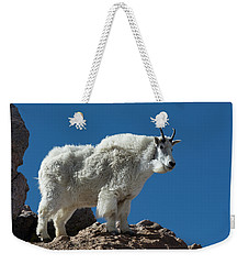 Weekender Tote Bag featuring the photograph Mountain Goat 2 by Gary Lengyel
