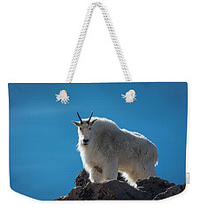 Weekender Tote Bag featuring the photograph Mountain Goat 3 by Gary Lengyel