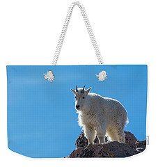 Weekender Tote Bag featuring the photograph Mountain Goat 4 by Gary Lengyel
