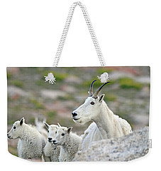 Weekender Tote Bag featuring the photograph Mountain Goat Family by Scott Mahon