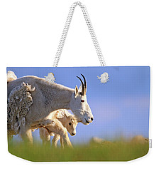 Weekender Tote Bag featuring the photograph Mountain Goat Light by Scott Mahon