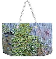 Mountain In Fall Weekender Tote Bag by Christine Lathrop