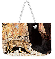 Weekender Tote Bag featuring the photograph Mountain Lion by Lawrence Burry