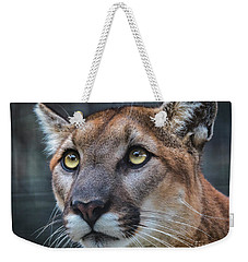 Mountain Lion Portrait  Weekender Tote Bag