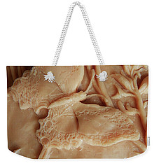 Mountain Meadow Original Clay Swallowtail Butterfly Detail Weekender Tote Bag