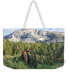 Mountain Moose Weekender Tote Bag by Chris Scroggins