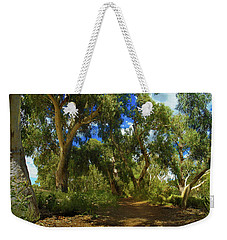 Weekender Tote Bag featuring the photograph Mountain Way by Mark Blauhoefer