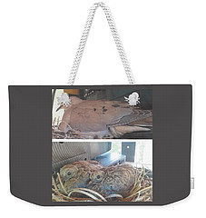 Mourning Dove Family Weekender Tote Bag by Jay Milo