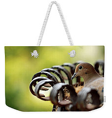 Mourning Dove In A Flower Planter Weekender Tote Bag