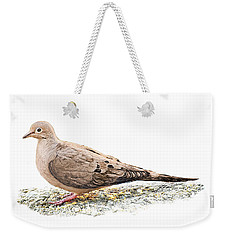 Mourning Dove On The Ground Weekender Tote Bag