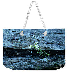 Weekender Tote Bag featuring the photograph Mouse Eared Chickweed by Ann E Robson