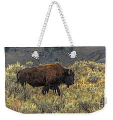 Weekender Tote Bag featuring the photograph Moving From Summer Into Fall by Yeates Photography