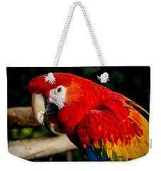 Mr Colorful  Weekender Tote Bag