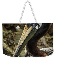 Mr. Cool Wildlife Art By Kaylyn Franks Weekender Tote Bag